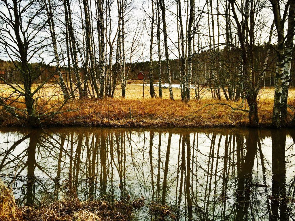 The Marschta Barn